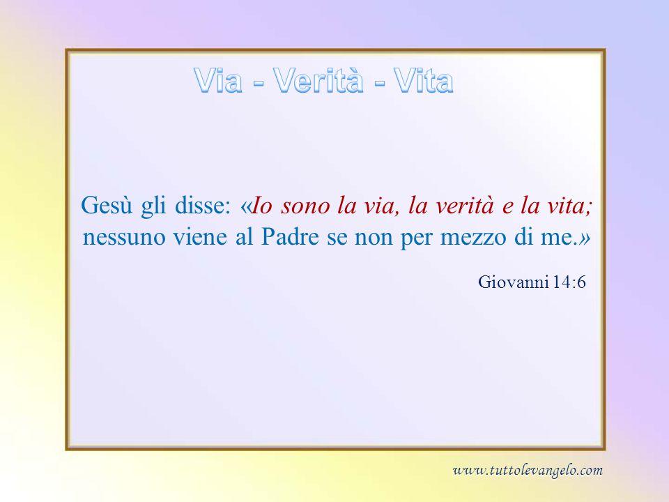 Via - Verità - VitaGesù gli disse: «Io sono la via, la verità e la vita; nessuno viene al Padre se non per mezzo di me.»