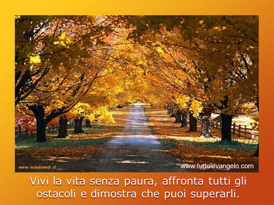 www.tuttolevangelo.com Vivi la vita senza paura, affronta tutti gli ostacoli e dimostra che puoi superarli.