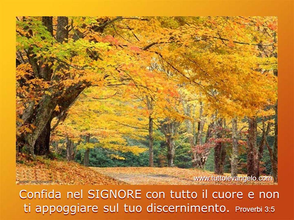 www.tuttolevangelo.com Confida nel SIGNORE con tutto il cuore e non ti appoggiare sul tuo discernimento.
