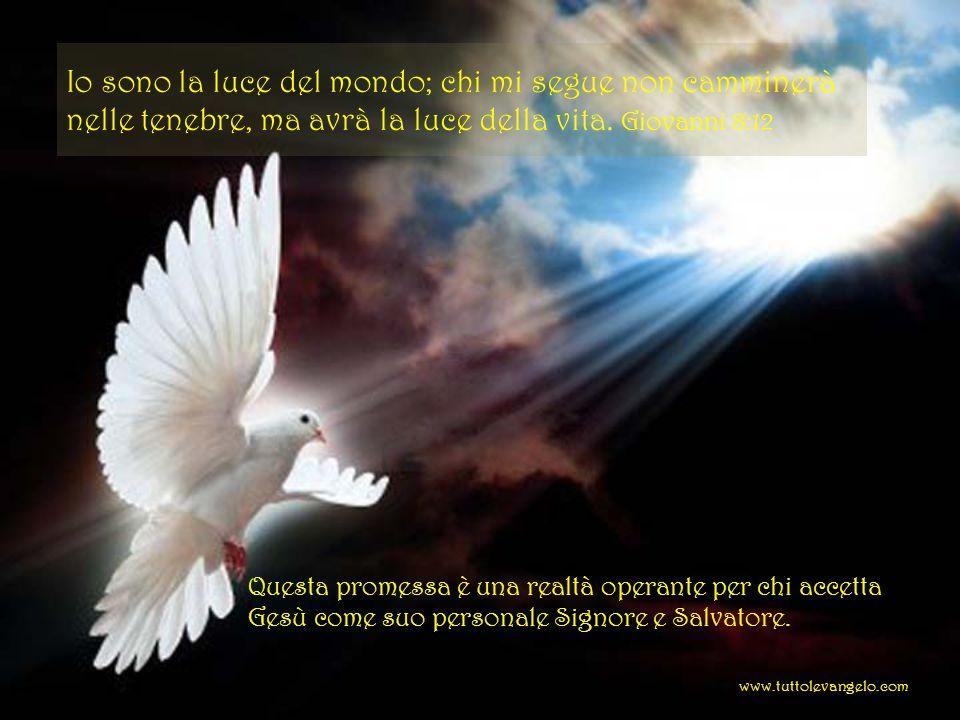 Io sono la luce del mondo; chi mi segue non camminerà nelle tenebre, ma avrà la luce della vita. Giovanni 8:12