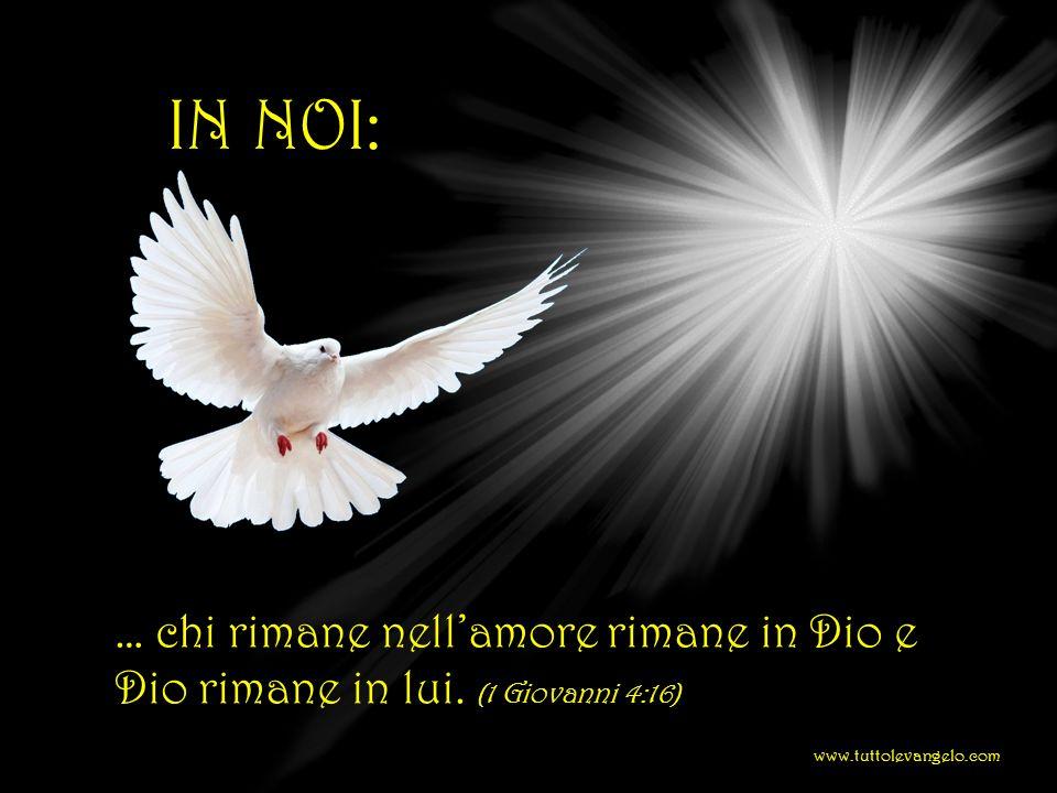 IN NOI: … chi rimane nell'amore rimane in Dio e Dio rimane in lui.