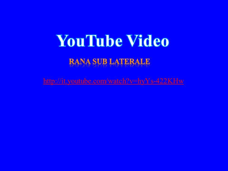 YouTube Video Rana sub laterale