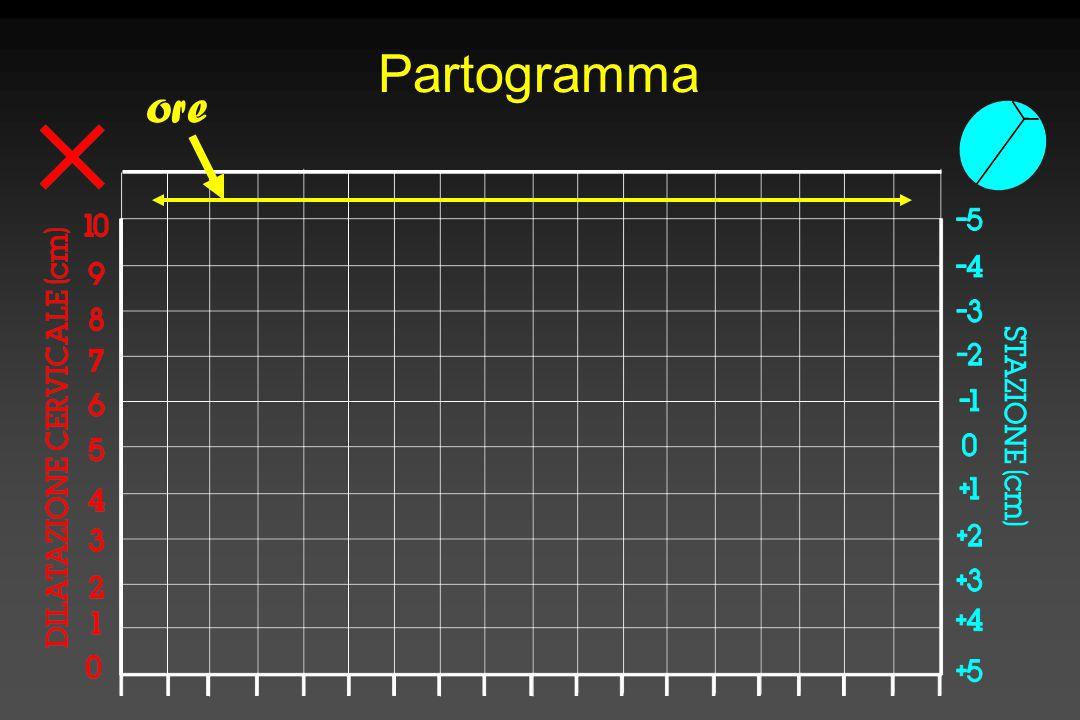 Partogramma ore