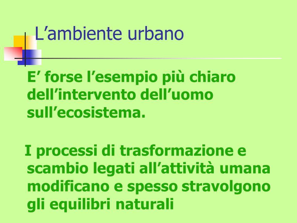 L'ambiente urbano E' forse l'esempio più chiaro dell'intervento dell'uomo sull'ecosistema.
