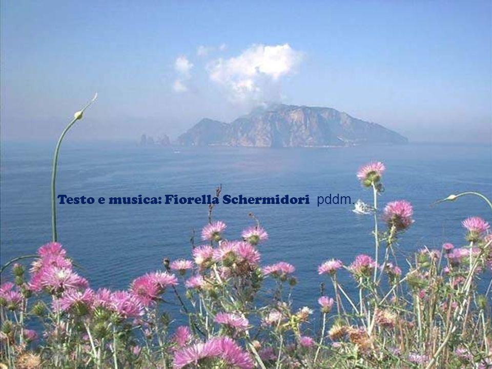 Testo e musica: Fiorella Schermidori pddm.