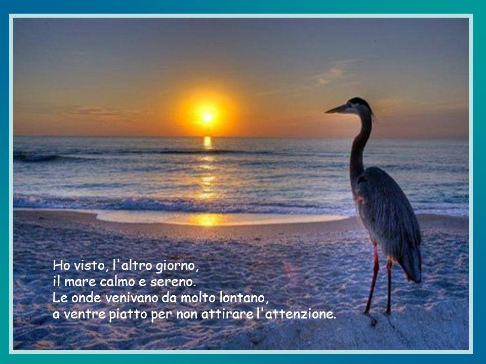 Ho visto, l altro giorno, il mare calmo e sereno.