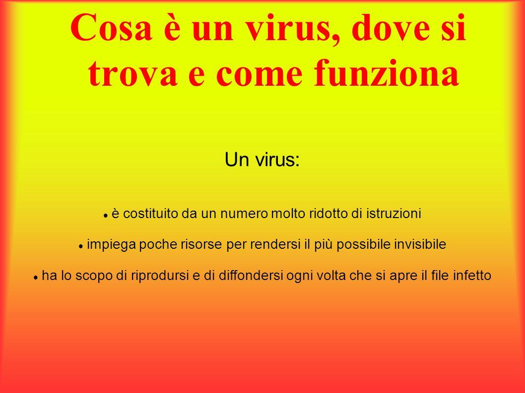 Cosa è un virus, dove si trova e come funziona