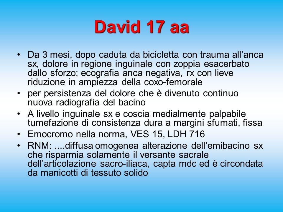 David 17 aa