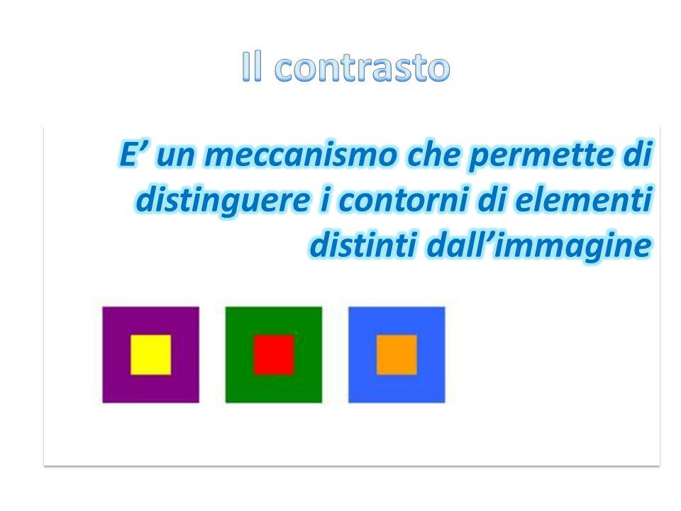 Il contrasto E' un meccanismo che permette di distinguere i contorni di elementi distinti dall'immagine.