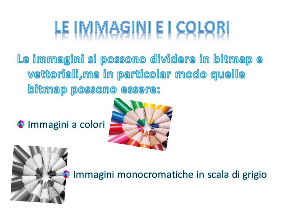 Le immagini e i colori Le immagini si possono dividere in bitmap e vettoriali,ma in particolar modo quelle bitmap possono essere: