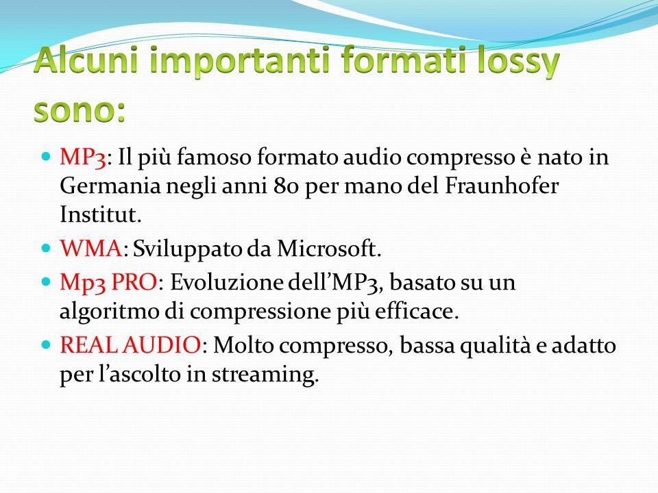 Alcuni importanti formati lossy sono: