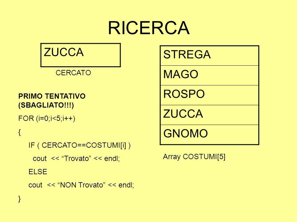 RICERCA ZUCCA STREGA MAGO ROSPO ZUCCA GNOMO CERCATO