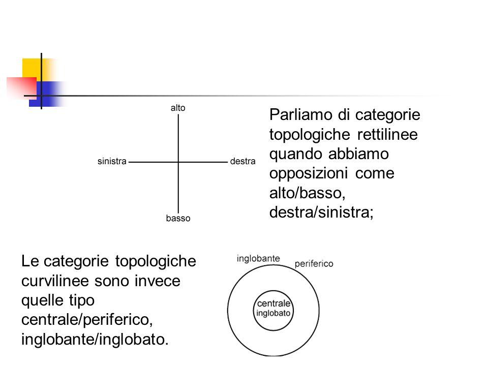 Parliamo di categorie topologiche rettilinee quando abbiamo opposizioni come alto/basso, destra/sinistra;