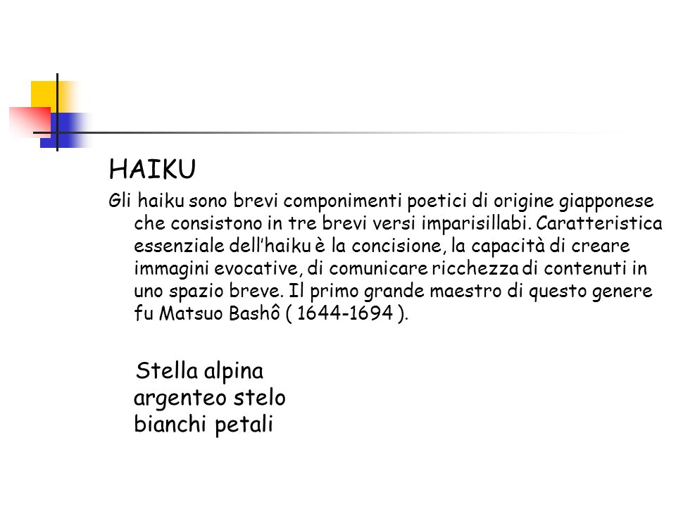 HAIKU Stella alpina argenteo stelo bianchi petali