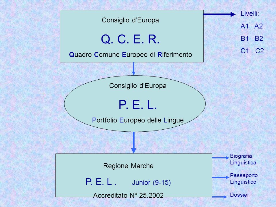 Q. C. E. R. P. E. L. P. E. L . Junior (9-15) Livelli: A1 A2