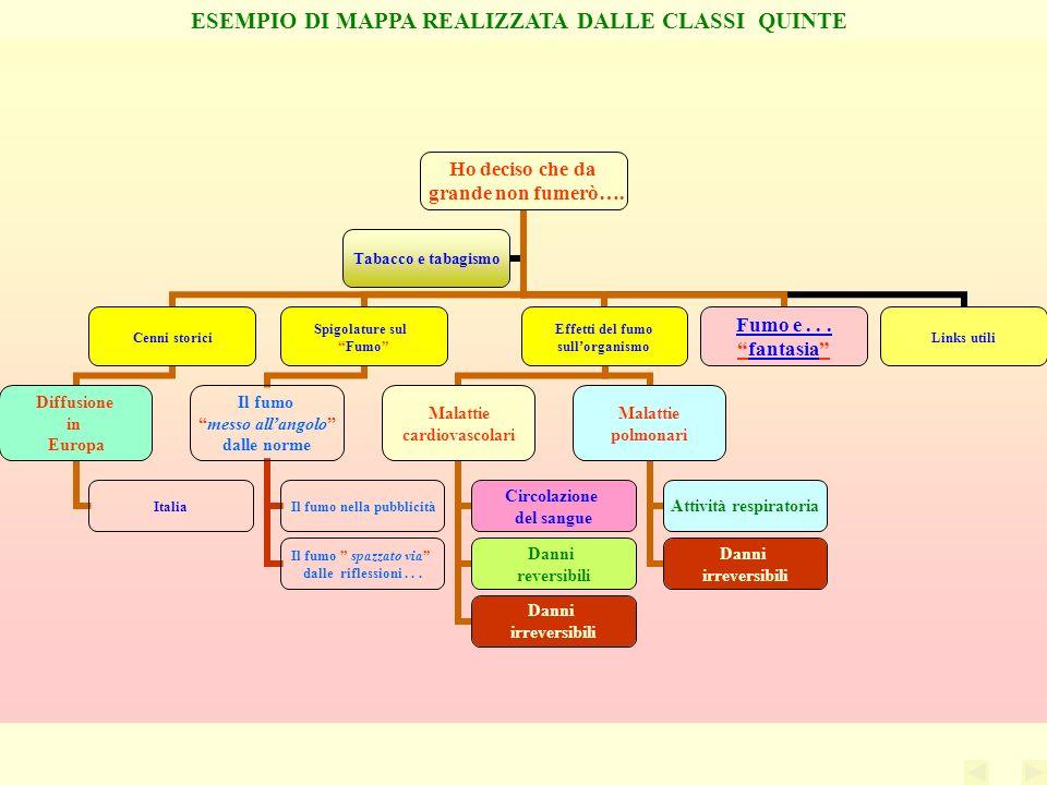 ESEMPIO DI MAPPA REALIZZATA DALLE CLASSI QUINTE