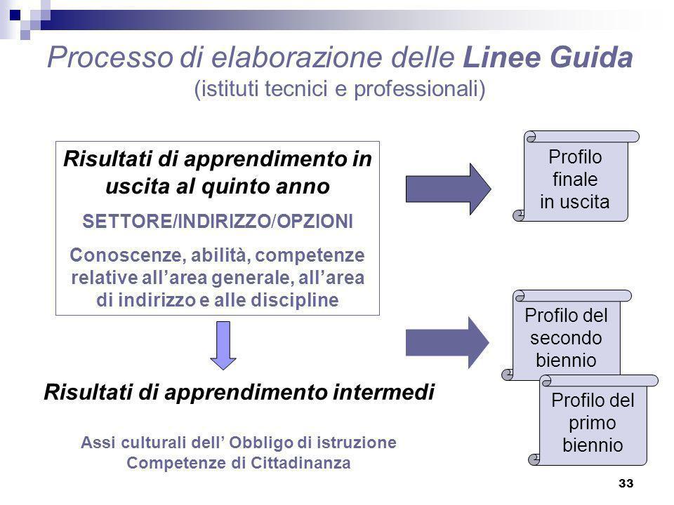 Processo di elaborazione delle Linee Guida (istituti tecnici e professionali)