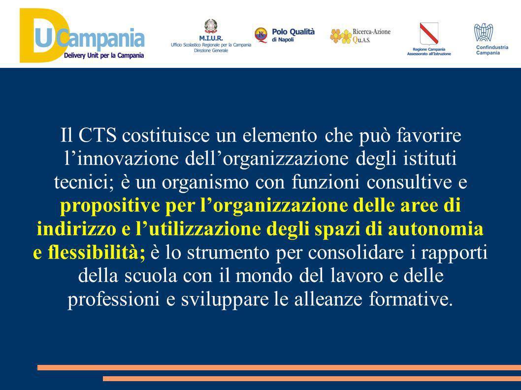 Il CTS costituisce un elemento che può favorire l'innovazione dell'organizzazione degli istituti tecnici; è un organismo con funzioni consultive e propositive per l'organizzazione delle aree di indirizzo e l'utilizzazione degli spazi di autonomia e flessibilità; è lo strumento per consolidare i rapporti della scuola con il mondo del lavoro e delle professioni e sviluppare le alleanze formative.