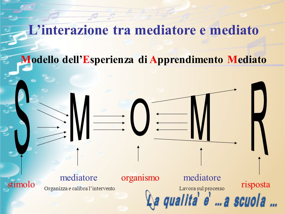 S M O M R L'interazione tra mediatore e mediato