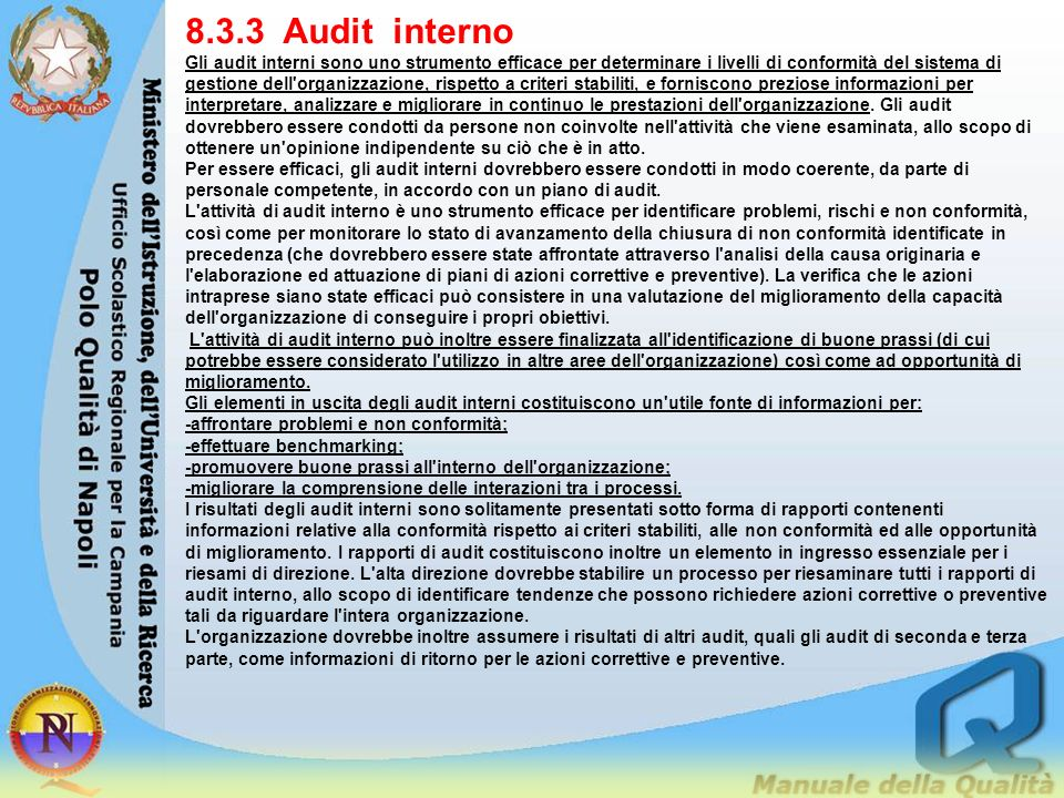 8.3.3 Audit interno