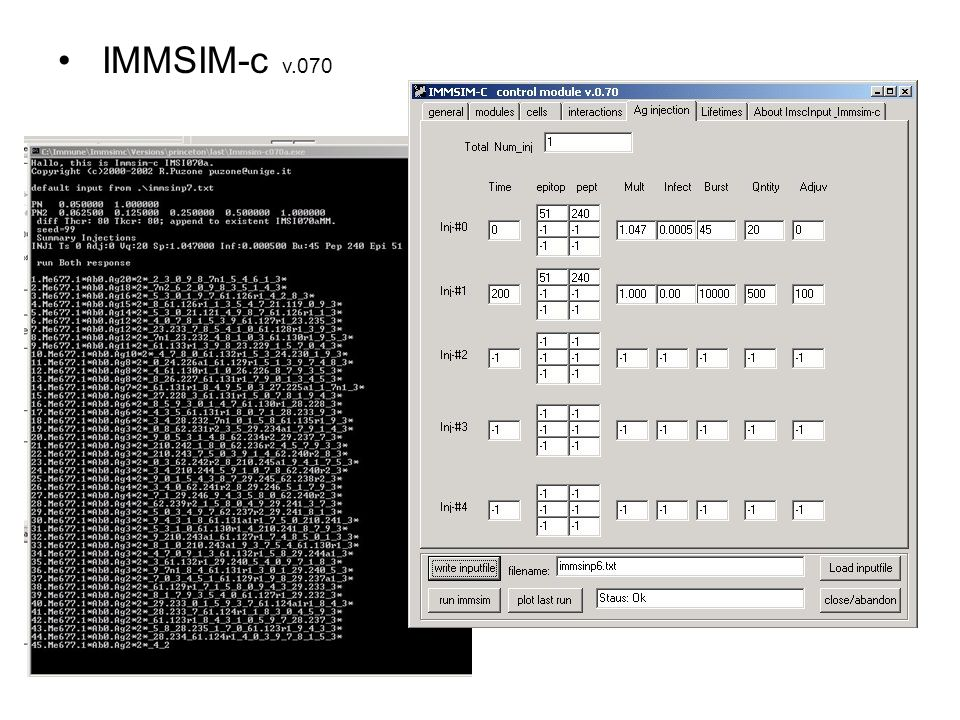 IMMSIM-c v.070
