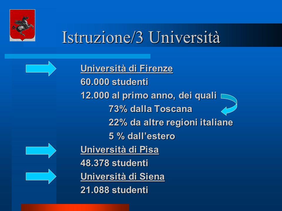 Istruzione/3 Università