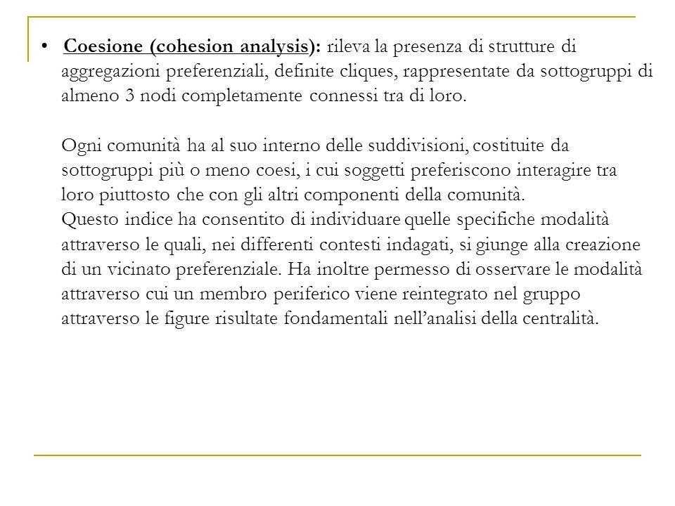 Coesione (cohesion analysis): rileva la presenza di strutture di aggregazioni preferenziali, definite cliques, rappresentate da sottogruppi di almeno 3 nodi completamente connessi tra di loro.