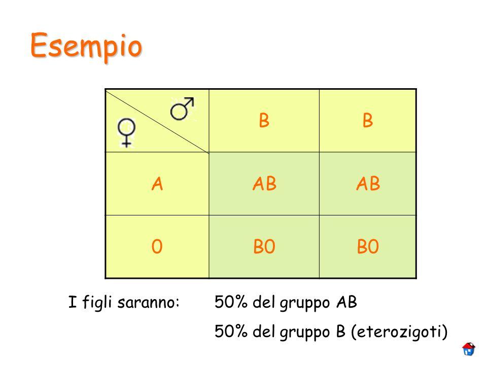 Esempio B A AB B0 I figli saranno: 50% del gruppo AB