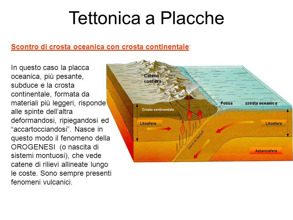 Tettonica a Placche Scontro di crosta oceanica con crosta continentale: