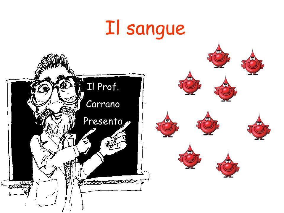 Il sangue Il Prof. Carrano Presenta