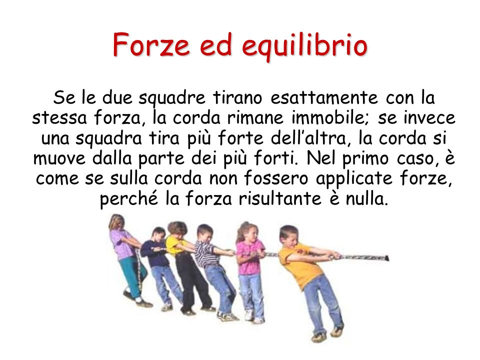 Forze ed equilibrio