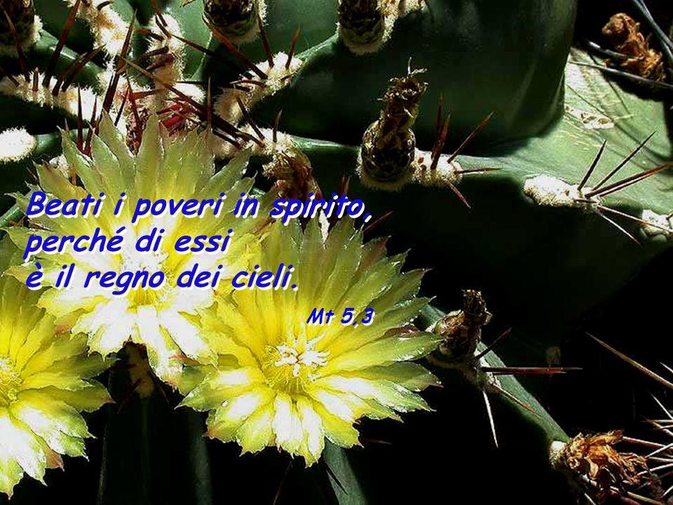 Beati i poveri in spirito,