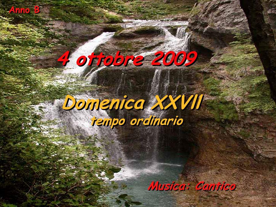 Anno B 4 ottobre 2009 Domenica XXVll tempo ordinario Musica: Cantico