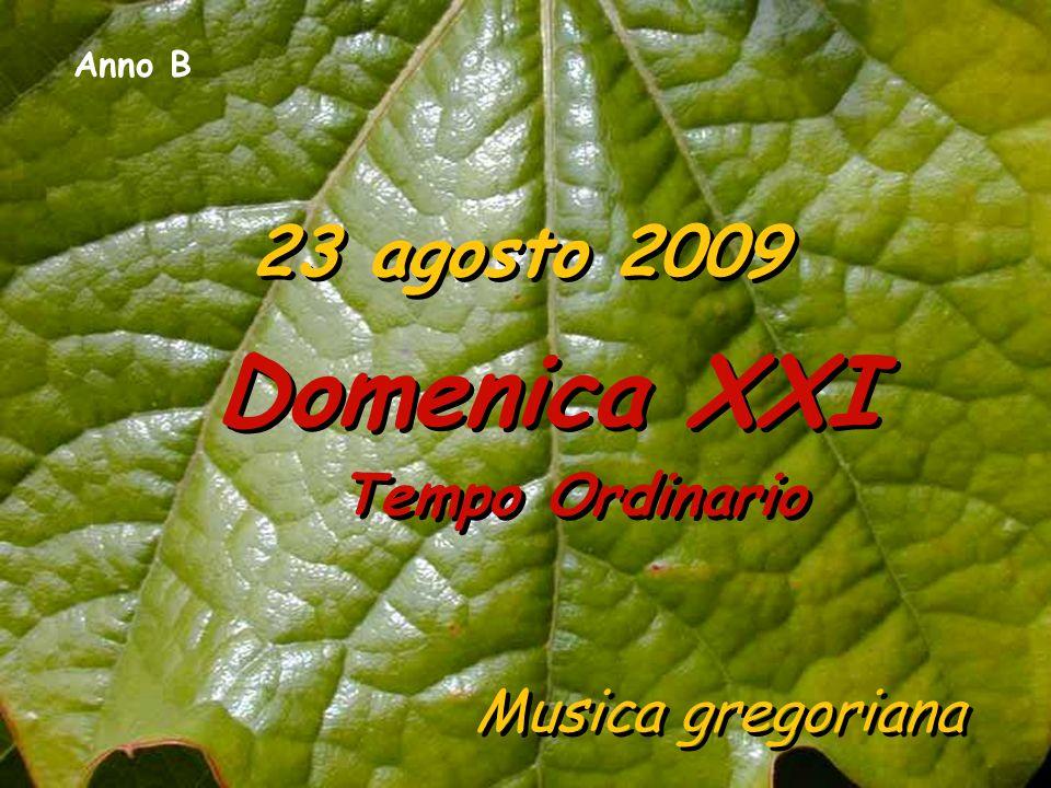 Domenica XXI Tempo Ordinario
