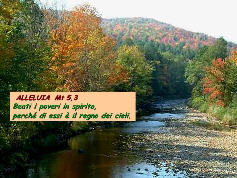 ALLELUIA Mt 5,3 Beati i poveri in spirito, perché di essi è il regno dei cieli.