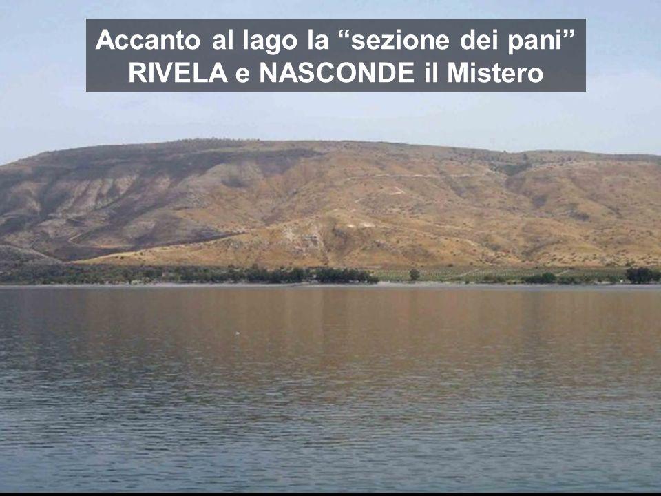 Accanto al lago la sezione dei pani RIVELA e NASCONDE il Mistero