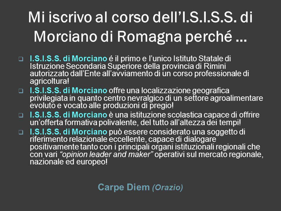 Mi iscrivo al corso dell'I.S.I.S.S. di Morciano di Romagna perché …