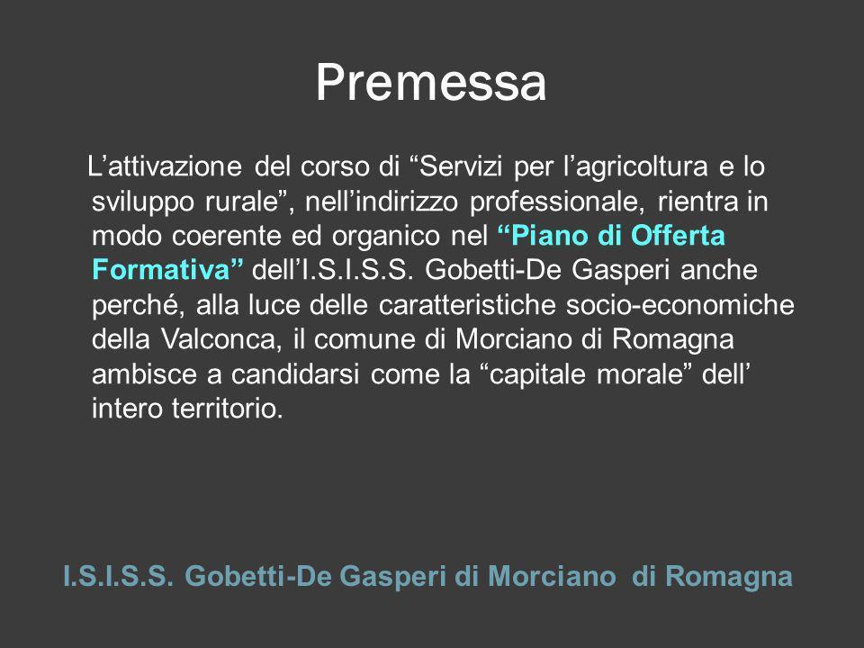 I.S.I.S.S. Gobetti-De Gasperi di Morciano di Romagna