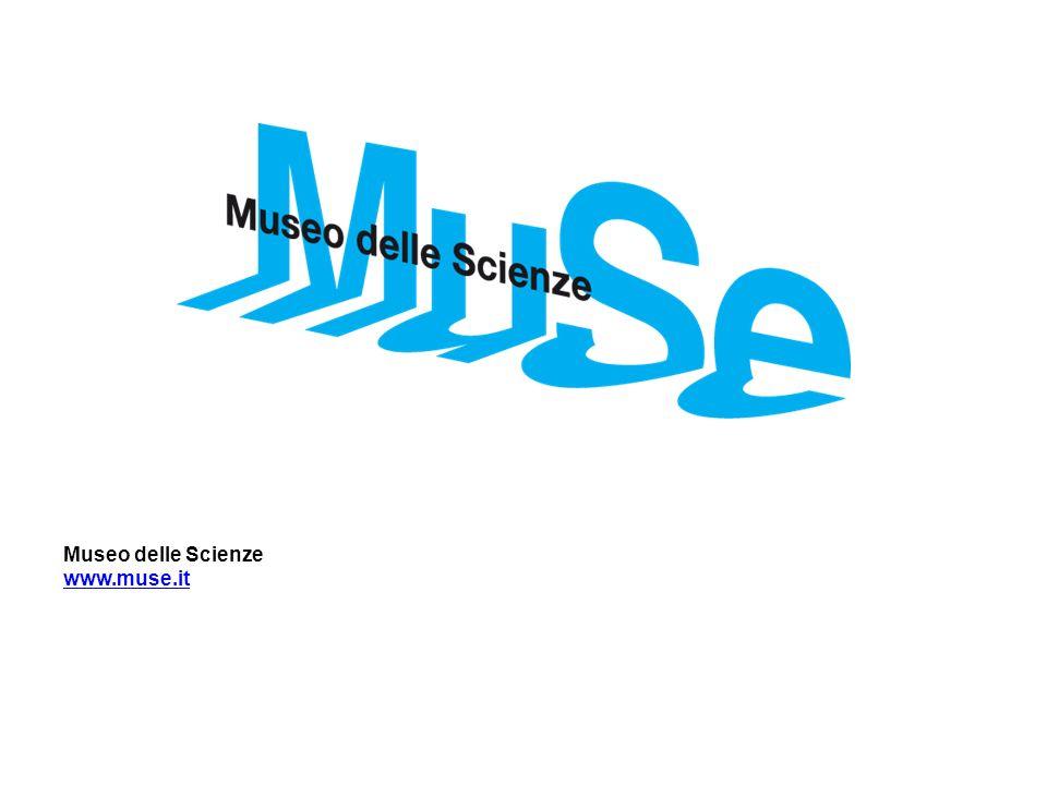 Museo delle Scienze www.muse.it
