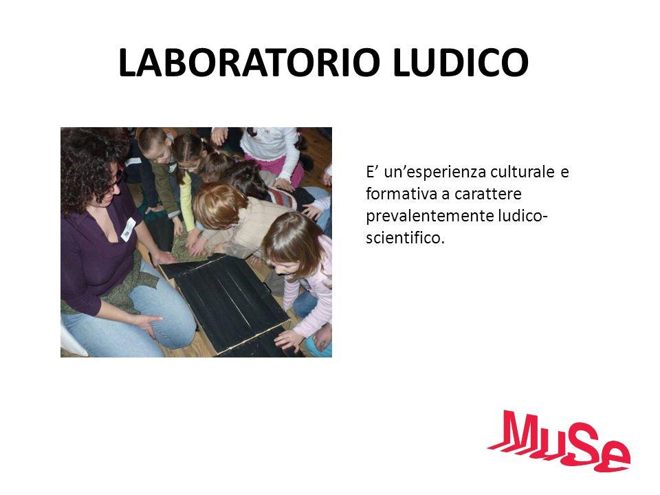 LABORATORIO LUDICO E' un'esperienza culturale e formativa a carattere prevalentemente ludico-scientifico.