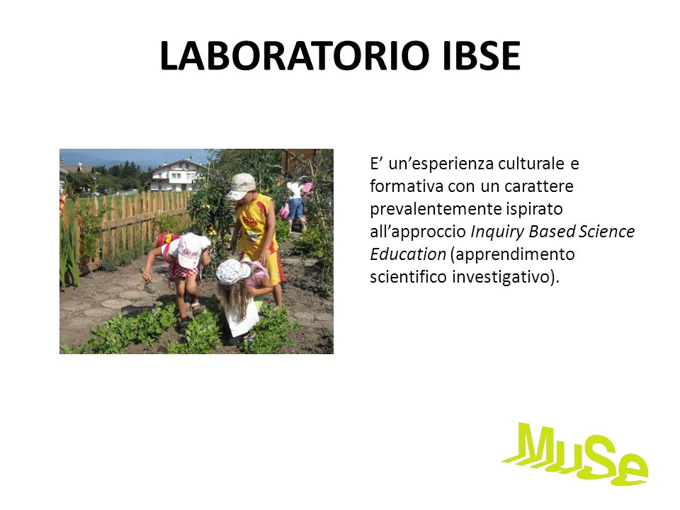 LABORATORIO IBSE