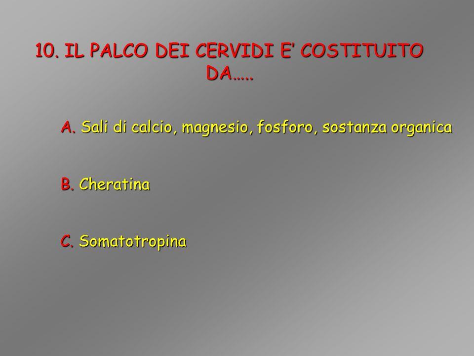 10. IL PALCO DEI CERVIDI E' COSTITUITO DA…..