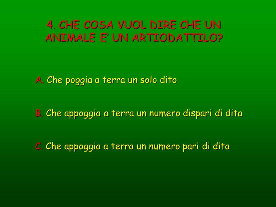 4. CHE COSA VUOL DIRE CHE UN ANIMALE E' UN ARTIODATTILO