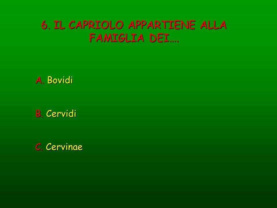 6. IL CAPRIOLO APPARTIENE ALLA FAMIGLIA DEI….