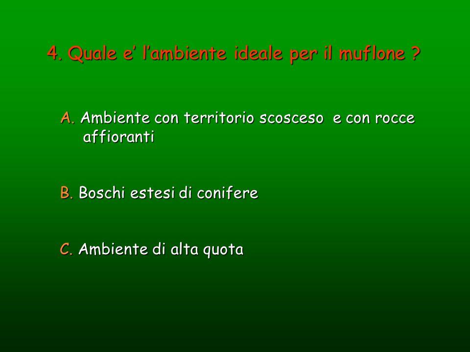 4. Quale e' l'ambiente ideale per il muflone