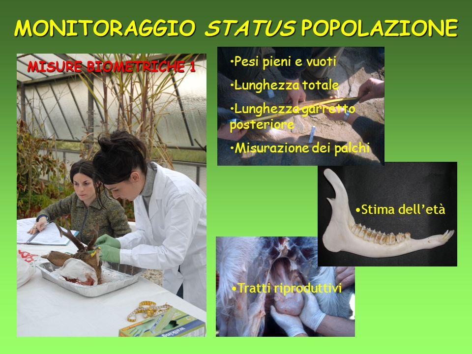 MONITORAGGIO STATUS POPOLAZIONE
