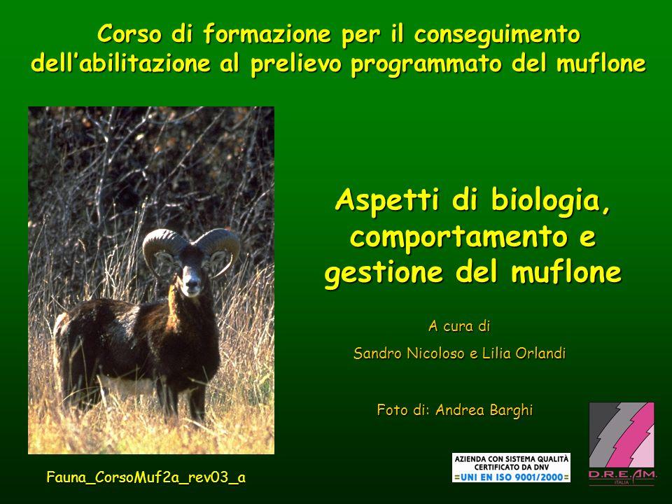Aspetti di biologia, comportamento e gestione del muflone