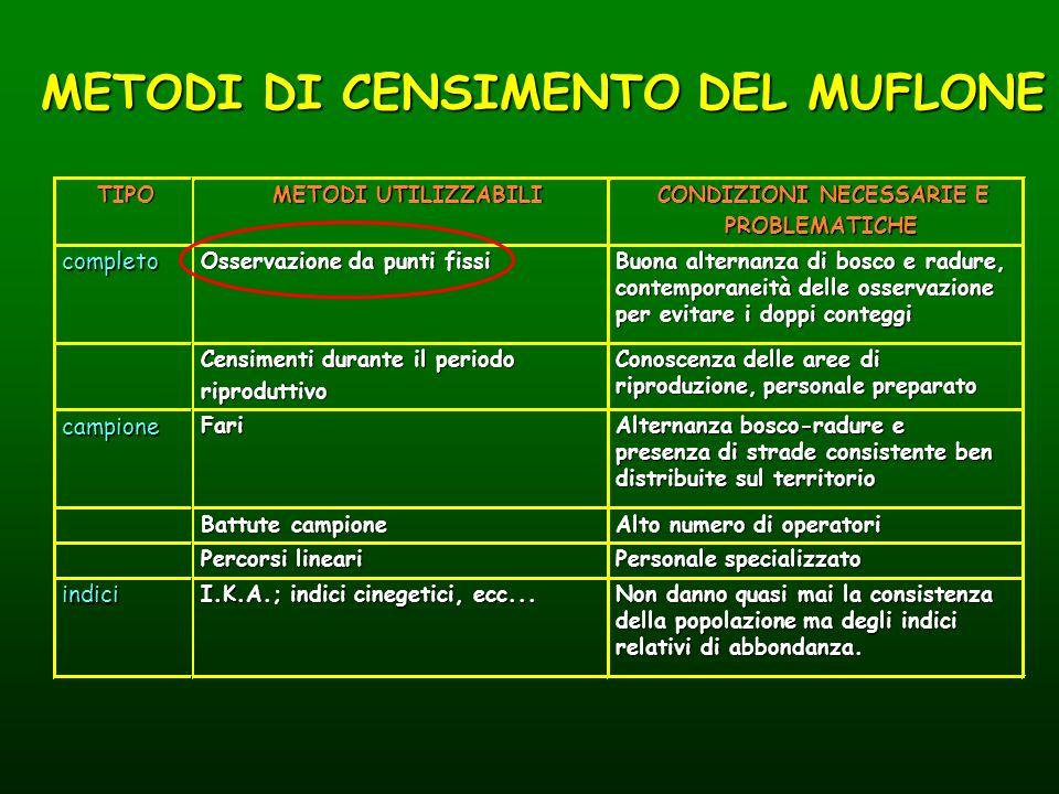 METODI DI CENSIMENTO DEL MUFLONE