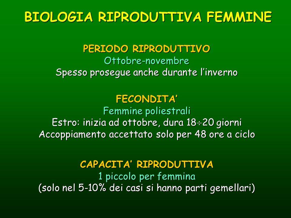 BIOLOGIA RIPRODUTTIVA FEMMINE