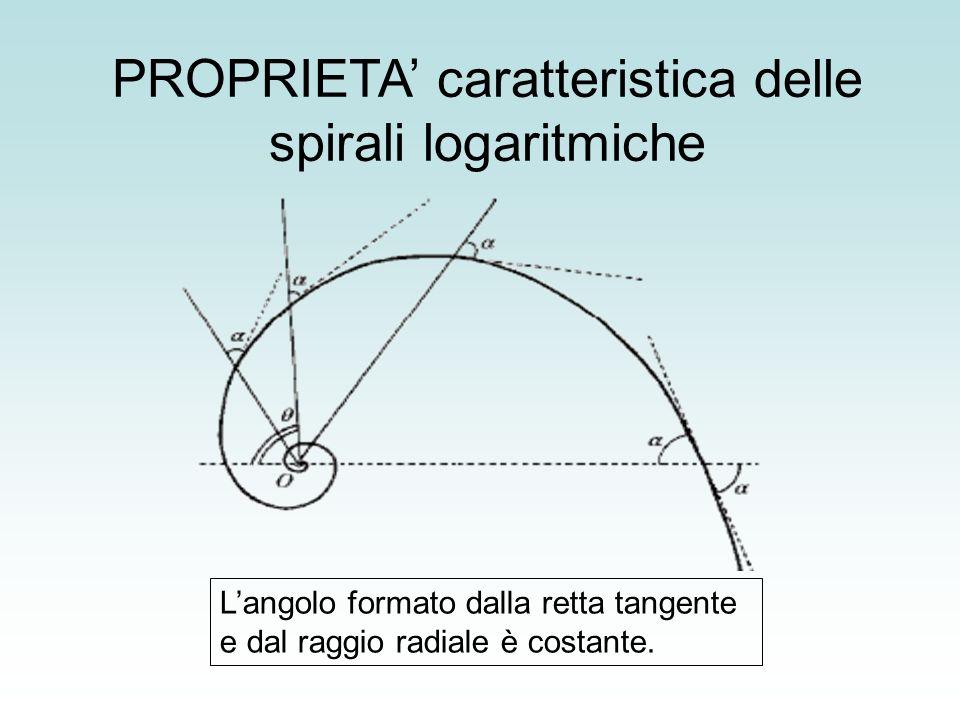PROPRIETA' caratteristica delle spirali logaritmiche